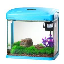 fish for office. Office Fish. Unique Fish Tank Full Size Of Small Square How To Decorate For