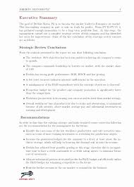 Company Report Template Fascinating Business Report Format Template Lovely Business Requirements