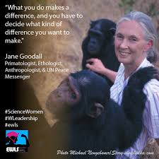 QUOTE Jane Goodall Beauteous Jane Goodall Quotes