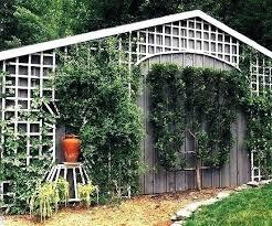 wall mount trellis down hill design ideas trellises mounted garden