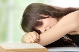 bad study habits that crush your productivity essay tigers lazy student