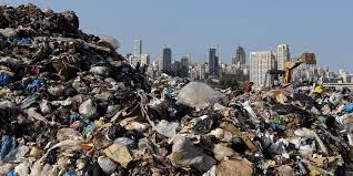 Landfill News | Children Of The Landfill