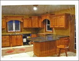 Home Made Kitchen Cabinets Kitchen Cabinets Buffalo Ny Area Design Porter