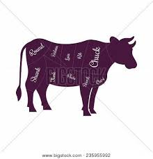Cow Beef Meat Cuts Vector Photo Free Trial Bigstock