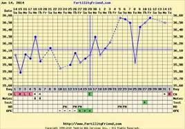 30 Day Cycle Bfp