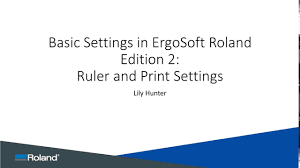 Ergosoft Roland Edition Ruler And Print Settings