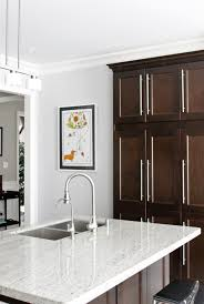 kitchen counter clipart. am dolce vita new kitchen art cabinets melrose park living cabinets: medium size counter clipart d