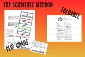 Scientific Method Flip Chart Foldable