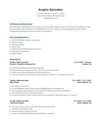 Jewelry Sales Resume Professional User Manual Ebooks