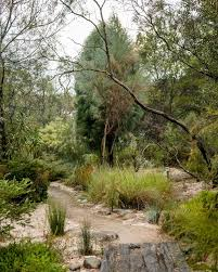 Small Picture 46 best Australian Native Garden images on Pinterest Landscaping