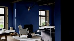 Verf Grijs Blauw Vaak Licht Lx03 Tricetirisadme