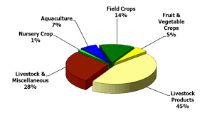 Pie Chart Sparsely Sage And Timely
