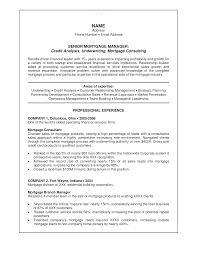 Sales Analyst Resume Banking Credit Analyst Resume Templates At