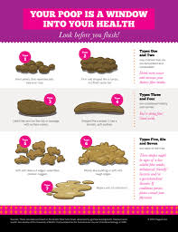 Healthy Poop Chart Stool Color Changes And Meaning Concept
