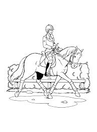 Kleurplaten Paarden Amika