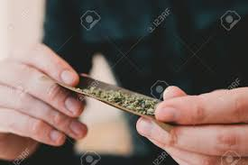 Lighting A Blunt Man Preparing And Rolling Marijuana Cannabis Blunt Close Up
