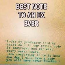 Quotes About Your Ex Impressive 48 Funny Comeback Quotes Burn Memes For Your Awful ExBoyfriend