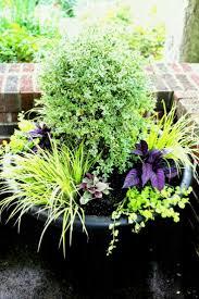 garden pots cheap. Best Large Garden Pots Ideas On Pinterest Plant Using Cheap Home Outdoor Decoration