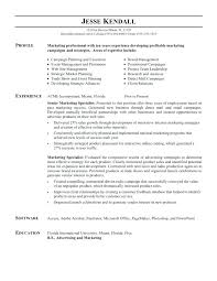It Resume Examples 2016 Megakravmaga Com