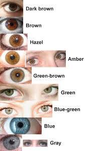 Hazel Eye Chart Refined Eye Color Poll Stormfront