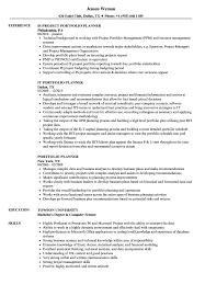 Data Visualization Resume Examples Portfolio Planner Resume Samples Velvet Jobs 11