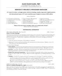 Technical Project Manager Resume Sample Old Version Old Version Old