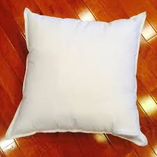 Outdoor Pillow Inserts 24×24