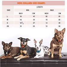 Lovatic Dog Bark Collar No Shock Vibration And Sound Humane Training Device For Small Medium Large Dogs 7 Levels Sensitivity Adjustment Best No