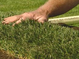 Diy Sod Laying A Sod Lawn Video Diy