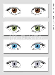 Eye Color Chart Brown Green Blue Gray Stock Illustration