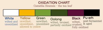 Oolong Tea Vs Green Tea Caffeine Content Weight Loss