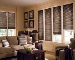 Living Room Blinds Living Room Elegant Vertical Blinds Home Depot Sliding Glass