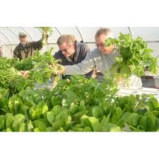 how to become a master gardener.  Master Become A Master Gardener And How To A M