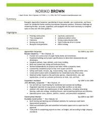 Carpentry Resume Sample Apprentice Carpenter Resume Sample Carpenter Resumes Livecareer 6