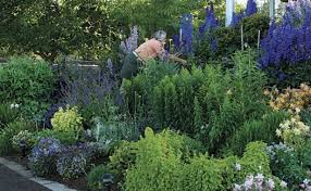 best garden plants. Simple Best If You Only Grow A Handful Of Vaseworthy Flowers These Are The Ones  Need Intended Best Garden Plants S