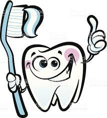Molaire Heureux De Dessin Anim De Dent Dentaire Personnage Tenant
