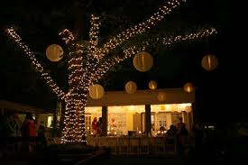 outdoor tree lighting ideas. Outdoor Tree Lights Lighting Ideas