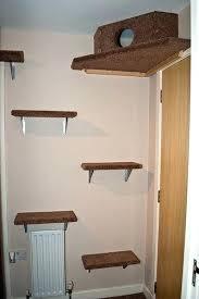Corner Cat Shelves Mesmerizing Corner Cat Shelf Cat Corner Tower Catemporary Cat Corner Shelf