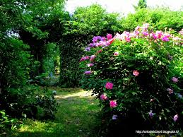 Lorto dei colori: giardino segreto o quasi