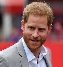 Prince Harry and Meghan warned about neighbourhood 'killer' near their  Montecito home - NZ Herald