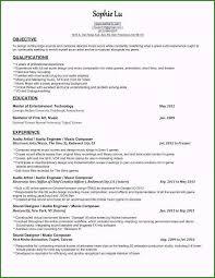 Sample Musician Resume Music Producer Resume Extraordinary Music Producer Resume