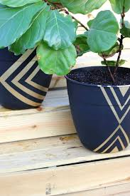 instead of paying 50 on a planter pot a one and dress it