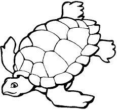 Ocean Coloring Pages Ocean Coloring Pages For Kids Free Online