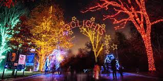 Zoolights At Smithsonians National Zoo In Washington D C