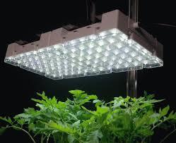 amazing of grow lights fluorescent plant lights home depot fluorescent grow lights
