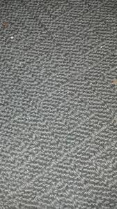 actually the rug