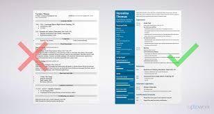 Sample Resume Of Chef Therpgmovie