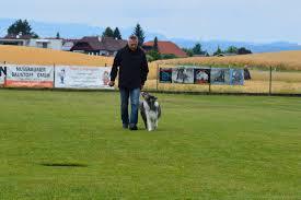 Hundesport 2017 öhv Welser Heide