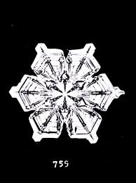 the first photographs of snowflakes