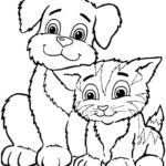Small Picture Chinchilla Animal Coloring Pages Atrinrayaneh Pilular Coloring